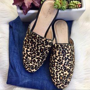 Caslon Leopard Print Mules Slip Ons size 7.5